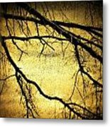 Roots At Night Metal Print by Michael L Kimble