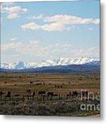 Rural Wyoming - On The Way To Jackson Hole Metal Print