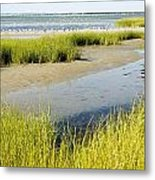 Salt Marsh Habitat With Flock Of Birds Metal Print