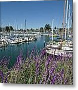 Santa Cruz Harbor - California Metal Print