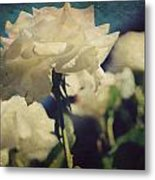 Scent Metal Print by Laurie Search