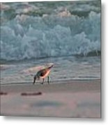 Seaside Trio Metal Print