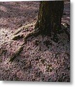 Soft Light On A Pink Carpet Of Fallen Metal Print