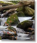 Stream Of Thought Metal Print