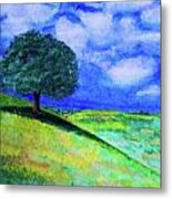 Summer Shade Metal Print by Jeanette Stewart