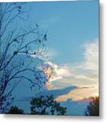 Summer Sky Metal Print by Juliana  Blessington