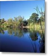Summertime Reflections Metal Print