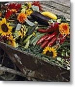 Sunflowers, Dahlias, Eggplants, Pepper Metal Print