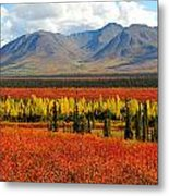 Talkeetna Mountains Moment Metal Print
