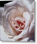 The Delicate Pale Pink Petals Metal Print