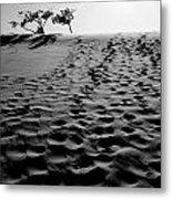 The Dunes At Dusk Metal Print