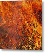 The Flames Of A Controlled Fire Metal Print