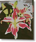 The Lily 1 Metal Print