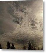 The Tree Cloud Metal Print by Barbara Stirrup