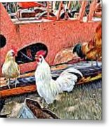 The Walk Of The Cock Metal Print