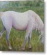 The White Horse Metal Print by Kerri Ligatich