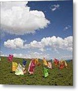 Tibetan Prayer Flags In A Field Metal Print by David Evans