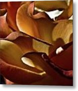 Torrid Metal Print by Monroe Snook