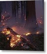 View Of A Controlled Fire In A Stand Metal Print