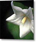 White Balloon Flower-faux Painting Metal Print