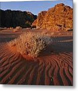 Wind Makes Waves In The Sand Metal Print