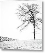 Winter In Black And White Metal Print