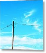 Wire Wrangler Metal Print