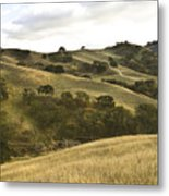 First Hill In Fall Metal Print