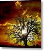 '' Sunset Tree ''  Metal Print