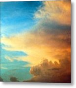 072006-14e Metal Print by Mike Davis