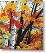 A Touch Of Canada Metal Print