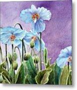 Blue Poppies Metal Print by Bobbi Price