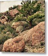 Colorado Rocky Mountains Metal Print