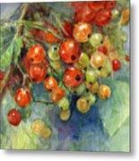 Currants Berries Painting Metal Print by Svetlana Novikova