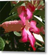 Desert Rose  Adenium Obesum Metal Print