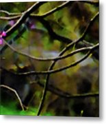 First Sign Of Spring Metal Print by Gerlinde Keating - Galleria GK Keating Associates Inc