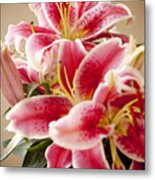 Graceful Lily Series 13 Metal Print