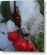Ice Berries Metal Print