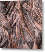 Intricate Root System Metal Print