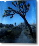 Joshua Trees At Night Metal Print