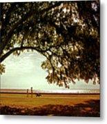 Mandeville Lakefront Metal Print