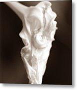 Moon Flower 2  Metal Print