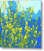 Palo Verde Spring Metal Print