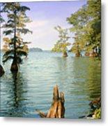 Reelfoot Lake Metal Print