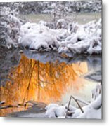 Reflections In Melting Snow Metal Print