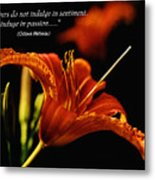 Single Tiger Lily Poster Metal Print