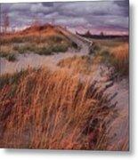 Sleeping Bear Dunes National Lakeshore Metal Print