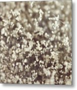 Spore Field Metal Print