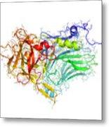 Tetanus Toxin C-fragment Structure Metal Print by Laguna Design