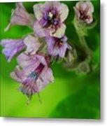 Tiny Purple Flower Metal Print
